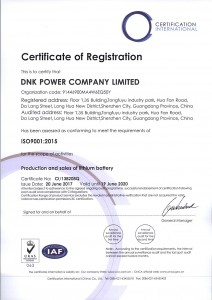 ISO 9001 DNK